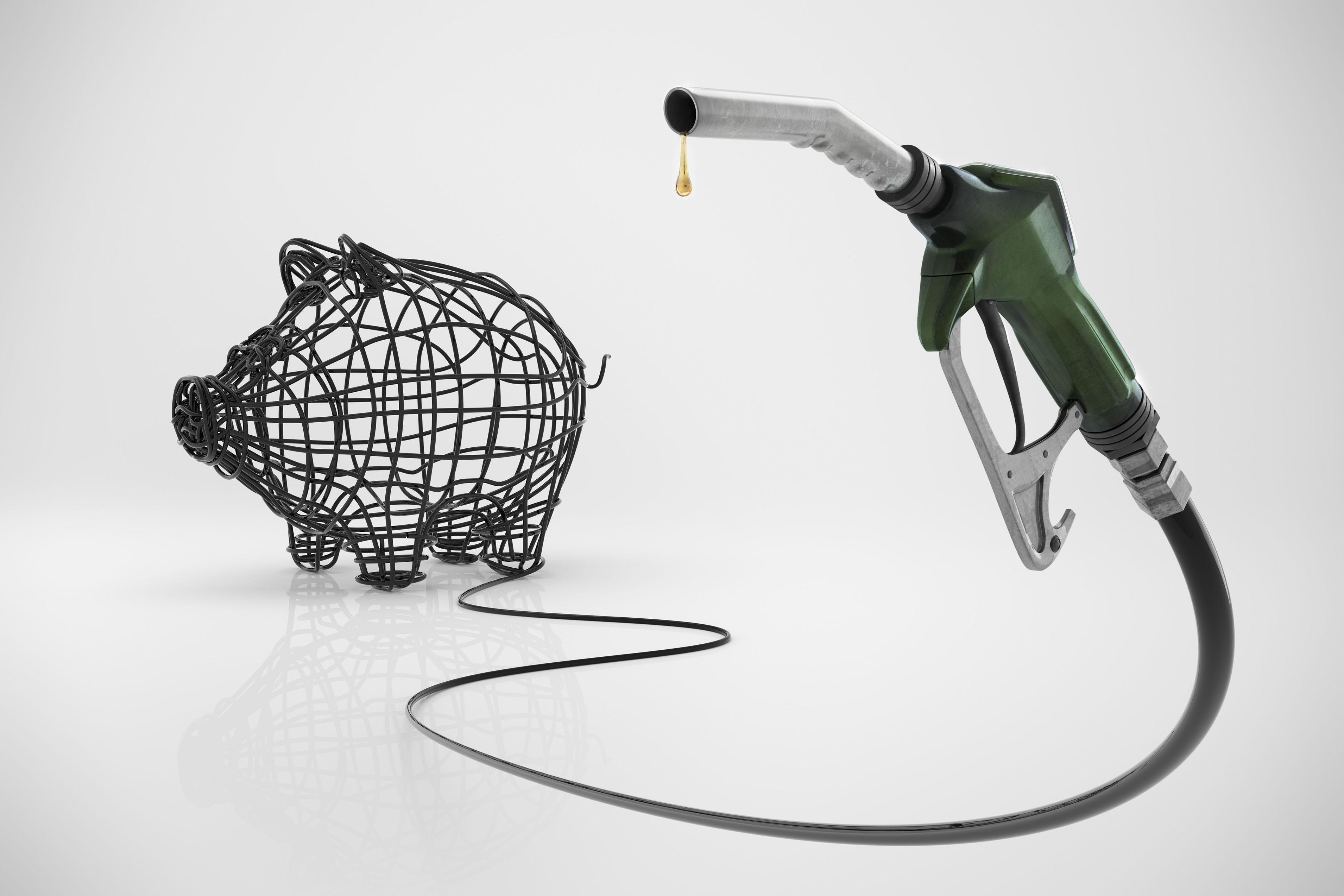 Fuel hose shaping piggybank