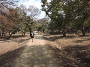 Orchha Nature Reserve