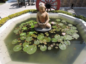 Fontana dell'hotel