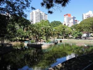 Foto nuove Brasile 560