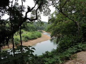Foto nuove Brasile 459