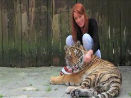 La Brambilla e la tigre (2011)