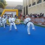 Esibizione di judo