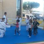 Taekwondo sul tatami