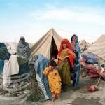 my-travel-companions-jalalabad