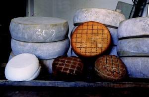 Carnia formaggi (2)