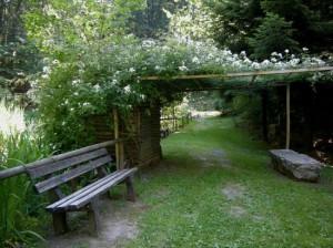 giardino-botanico-alpino