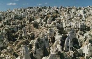 Una gran parte dell'atollo di Nauru si presenta così, a Topside