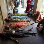 Un campo di sterilizzazione in Rajasthan nel 2011