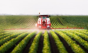 Monoculture irrorate di pesticidi negli Usa