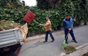 verde pulizia