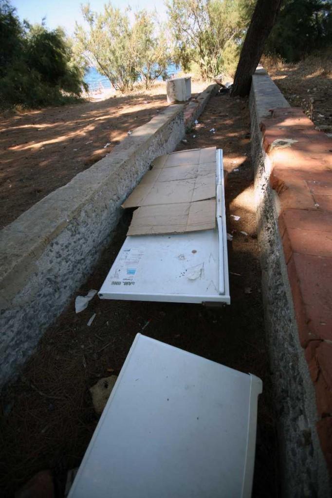 PALERMO 1672014( FOTO PETYX PALERMO) nella foto: rifiuti a colapesce