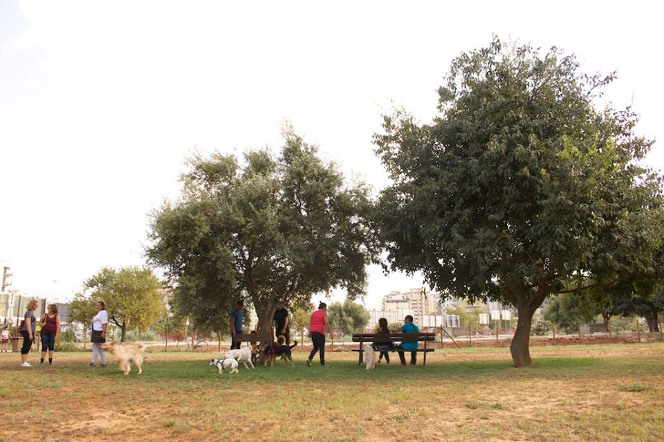 parco Uditore 1