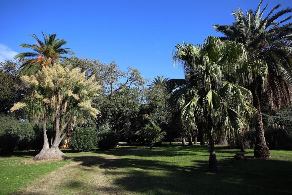 Palermo 13122014 ( FOTO PETYX PALERMO) Villa Malfitano
