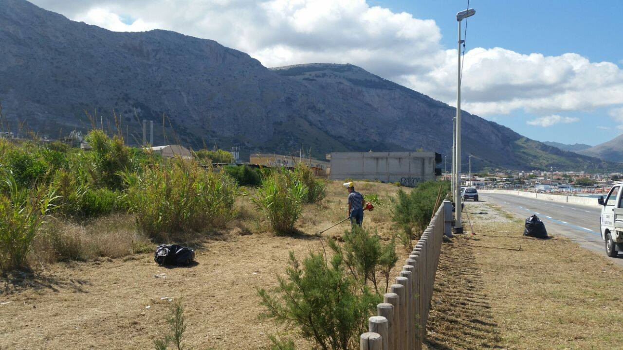 Isola giardinieri e volontari recuperano parco dune for Giardinieri genova