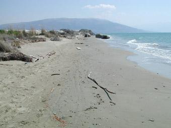 Spiaggia di Valona - Foto di Patrizia Pozzi