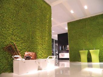 Allestimento di Verde Profilo - Foto di Verde Profilo
