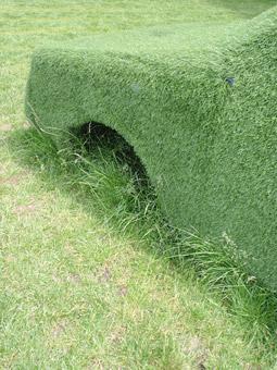 Automobile d'erba! - Foto di Patrizia Pozzi
