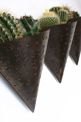 Cactus_Simona Colombini Manufatti
