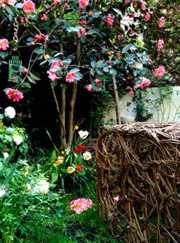 Giardino di Patrizia Pozzi - foto di Davide Forti