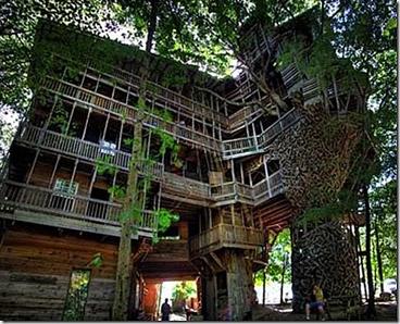 "Reggia...sull'albero! - da ""http://24.media.tumblr.com/"""