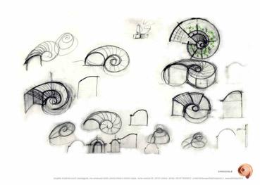 Abitare in una conchiglia - Disegno dello Studio Pozzi