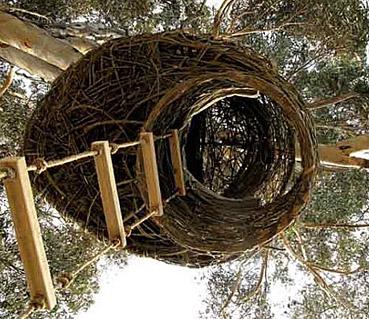 """Nido sull'albero - da """"http://assets.dornob.com/"""""""