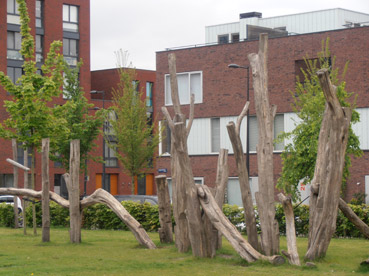 Giochi naturali...ad Amsterdam - foto di Patrizia Pozzi