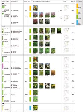 Certificazione LEED applicata al verde - disegno dello Studio Pozzi