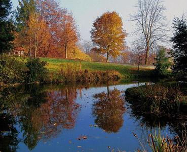 """Parco della Burcina - dal sito """"www.image.nanopress.it"""""""