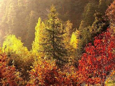 """Parco di Euntrebeun - dal sito """"www.image.nanopress.it"""""""
