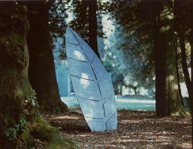 ...Una foglia artificiale in un bosco naturale... - Foto di proprietà dello Studio Pozzi
