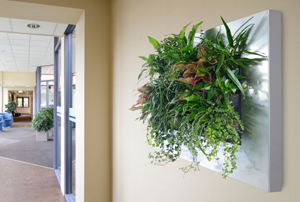 L 39 orto in casa paesaggi blog casa design - Giardino verticale in casa ...