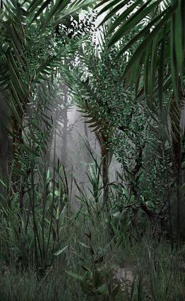 Blank-Interior-5