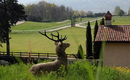 3) Il Borgo di Mustonate con il cervo,
