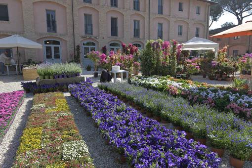 FloraCult Roma, con, sullo sfondo, l'agriturismo I Casali del Pino