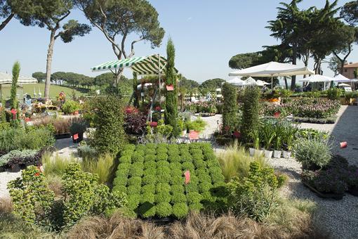 FloraCult Roma, uno spaccato espositivo