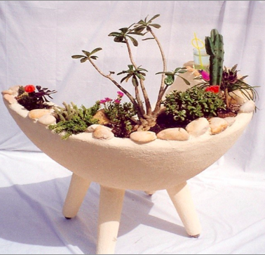 desert-chair-living-cacti