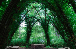 green_utopia