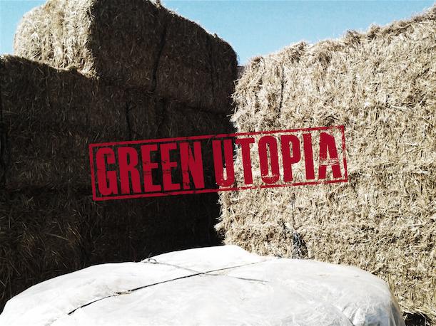 GREEN_UTOPIA_2