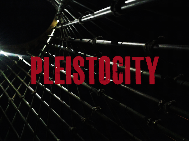 PLEISTOCITY_PARADIGMA_PLEISTOCENE_2