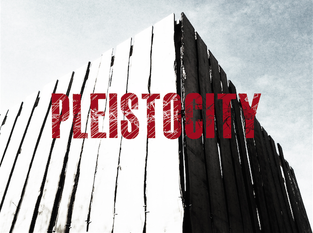 PLEISTOCITY_PARADIGMA_PLEISTOCENE_7