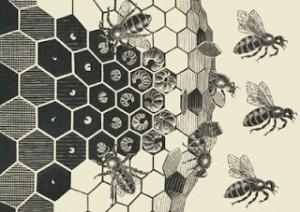 Ho sognato dei nidi di vespe cosa hai sognato blog for Escher metamorfosi