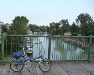 Bici su ponte di legno