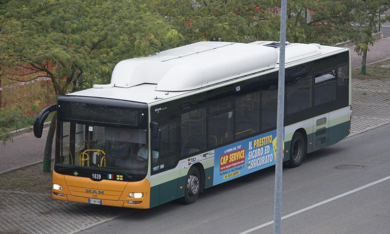 autobus-in-sosta-nel-capolinea-abusivo