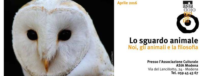 lo-sguardo-animale2016-3