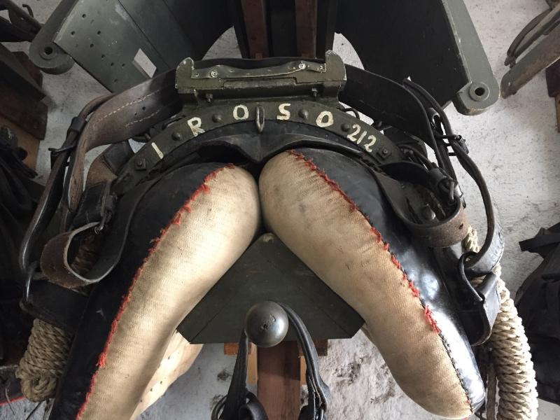 Il basto di Iroso: 25 chili vuoto