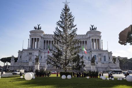 Roma:'Spelacchio'finisce a Corte dei Conti, esposto Codacons