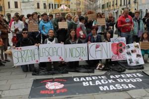 Manifestazione davanti al Comune di Sarzana contro il trasferimento dei cani di Tavolara in Emilia Romagna