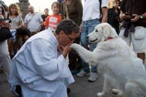 Due anni fa Picchia ha conosciuto padre Tomasz Jaeschke, sacerdote austriaco vegetariano che prega per il rispetto di ogni creatura e invita il Vaticano a fare altrettanto